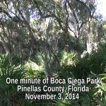 One Minute of Boca Ciega park